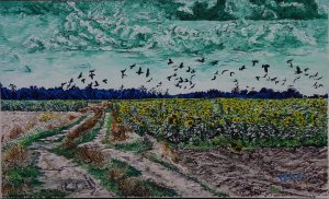 Sunflower field with crows
