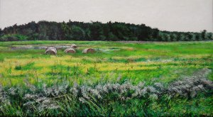 Old hay rolls
