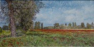 Bibor field
