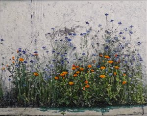 Cornflowers and Cape daisies against a wall