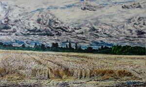 Rain clouds over a cornfield