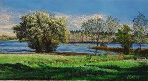 Sunken hayrolls (árvíz)