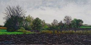 Black soil (Magyargencs)
