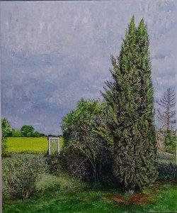 The cipress